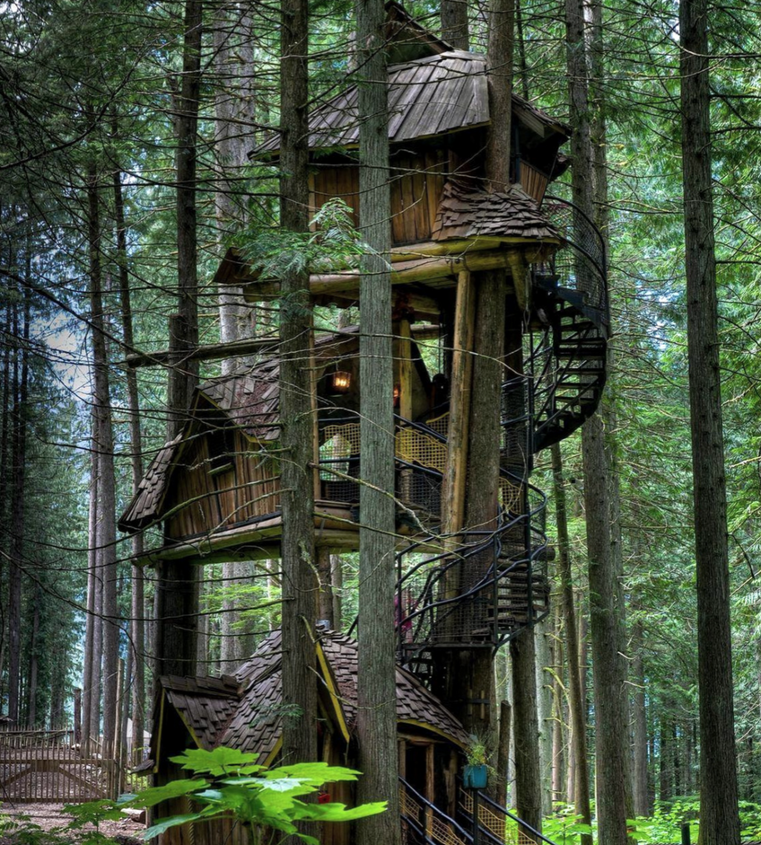 Top 10 Tree Houses To Get Inspired By 10 Tree Houses Top 10 Tree Houses To Get Inspired By Top 10 Tree Houses To Get Inspired By 10