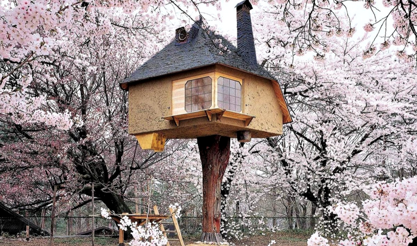 Top 10 Tree Houses To Get Inspired By 8 Tree Houses Top 10 Tree Houses To Get Inspired By Top 10 Tree Houses To Get Inspired By 8
